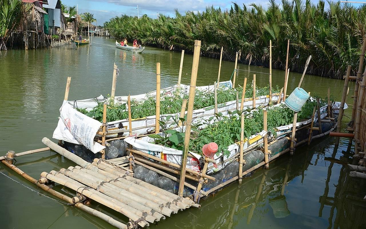 Vegetable gardens and emergency shelters on the water protect the inhabitants during the regular floods. (Photo: AWO International)